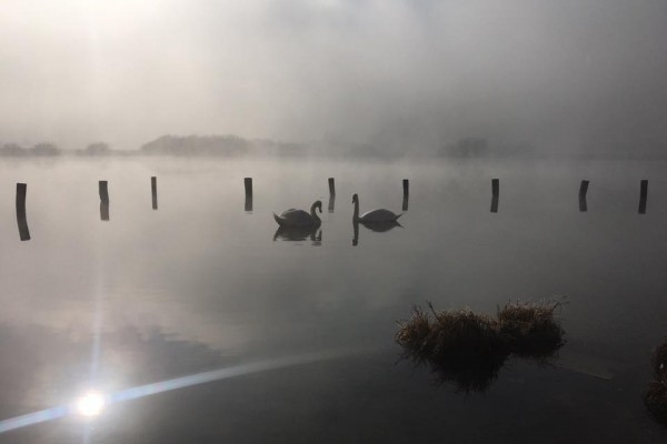 gostilnica-jezero-010667B06AB-6276-2EDD-5253-5C8A1D9F1477.jpg